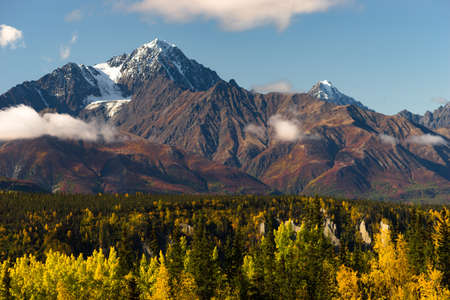 riverside trees: Fall is approaching in the Chugach National Forest Alaska