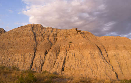 A big game animal Bighorn Sheep stands on the rocky cliff