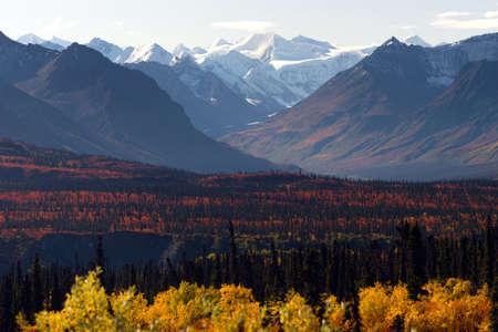 Mountain pass into the Denali Range outback Alaska fall season