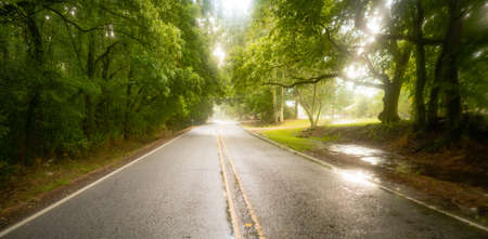 The pavement is wet as it rains on the road through southern agriculture producing landscape Stock fotó