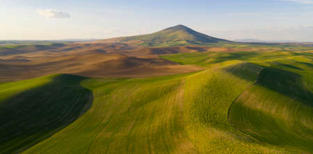Steptoe Butte State Park is up there somewhere on top of the bluff surrounded by Palouse Country farmland Reklamní fotografie - 123163934