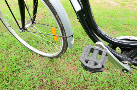 side shot: Side shot of the bicycle paddle in the park