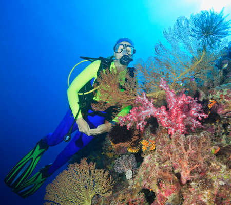 a pretty female scuba diver with pink soft corals and sea fans