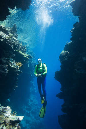 diver: a pretty female scuba diver swimming between two coral cliffs, underwater