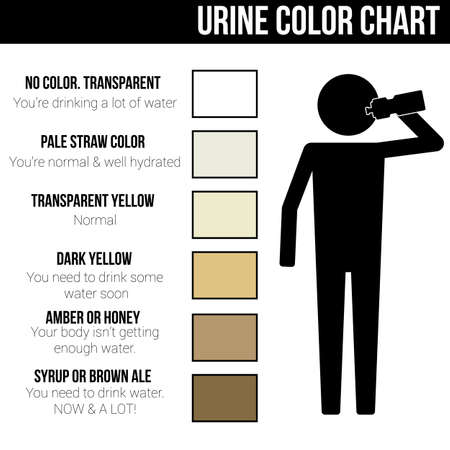 Urine color chart icon symbol sign pictogram info graphic Illustration
