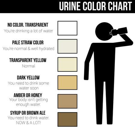 Urine kleurenkaart pictogram symbool teken pictogram info graphic Stock Illustratie
