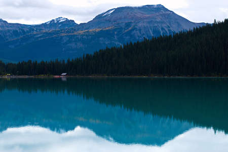 Reflecting water at Lake Louise with Pine Forest and Mountain in the Background