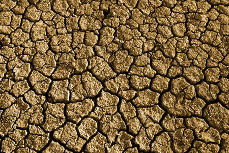 barrenness: Photo of cracked and dried soil under the Sun