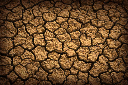 Pattern of cracked and dried soil under the Sun Stock Photo - 2425755
