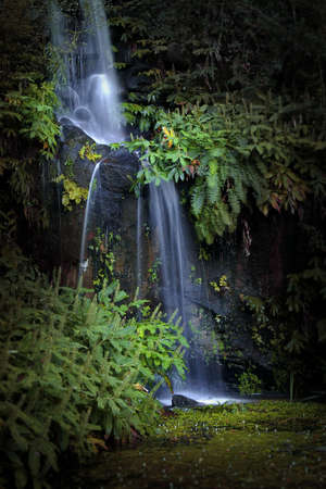 Belle scène d'automne avec chute d'eau douce et la végétation verte.  Banque d'images - 2427124