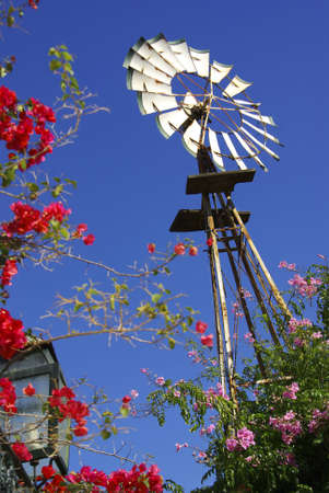 Perspective of a farm windmill with red flowers all around Stock Photo - 2427182