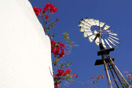 Perspective of a farm windmill with red flowers all around Stock Photo - 2426939
