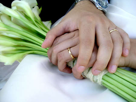 Just married groom and bride holding hands with rings. Stock Photo - 2426944