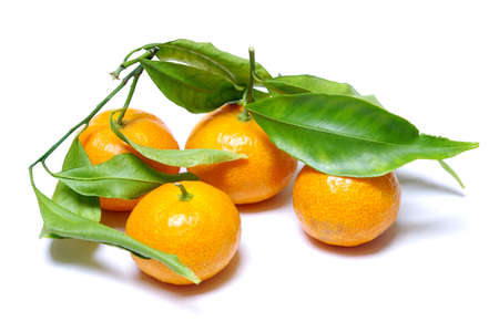 Four healthy tangerines with green leafs isolated in white Stock Photo - 2651943