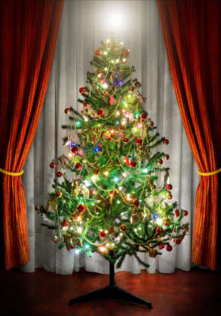 Photo of a Christmas tree in a room next to window curtains Stock Photo - 3815109