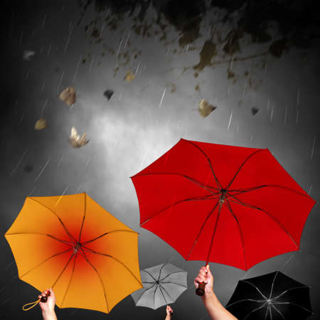 red umbrella: Opened umbrellas under dark sky with rain and leafs in the wind