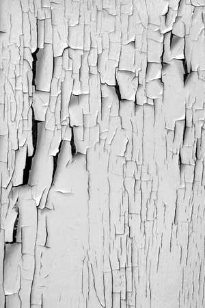 Background of old board with peeling white paint Stock Photo - 4188038