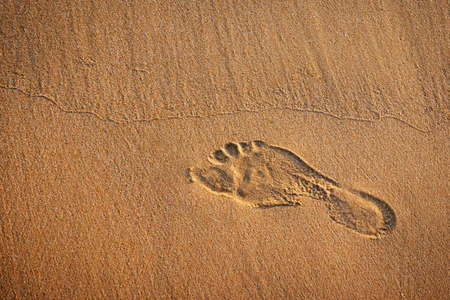 Single footprint in the wet sand of a beach photo