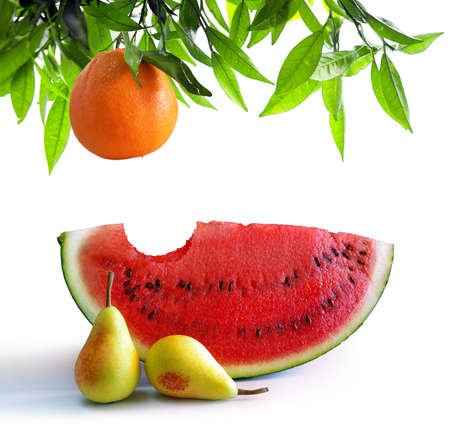 bitten: Bitten watermelon slice, two little pears and a orange tree branch isolated in white Stock Photo
