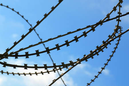 Closeup of sharp barbed wire over blue sky Stock Photo - 5597252