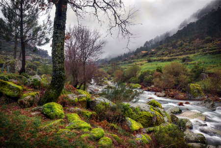 Landscape of a countryside scenery with trees and mossy rocks by a water spring photo