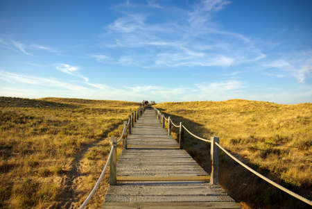 Wooden walkway over the sand dunes to the beach Stock Photo - 7529733