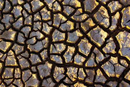 aridness: Pattern of cracked and dried soil under the Sun