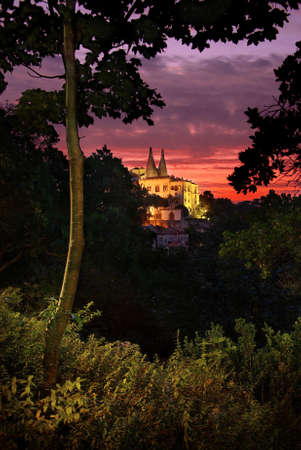 view through: Beautiful view through the vegetation of the Royal Palace of Sintra at sunset