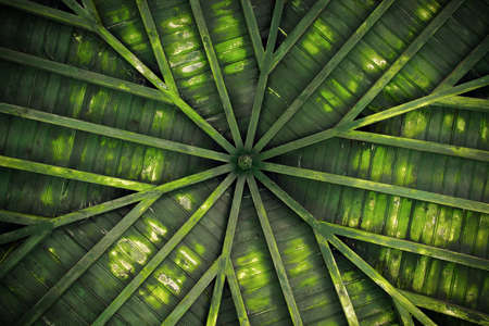 Detail of a green old wooden ceiling with radial design photo