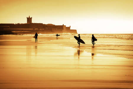 Silhouette of surfers walking in the beach at sunset