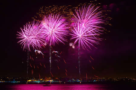 fire works: New year celebration with colorful fireworks over the sea near the coastline