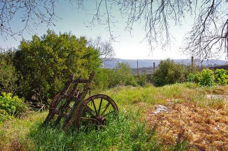 carreta madera: Restos de un vagón viejo y abandonado en un campo debajo de un árbol