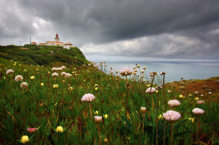 Wild flowers and the lighthouse in the cliffs of Roca Cape in Portugal photo