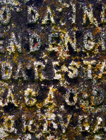 Carved Latin text in an ancient dark tombstone with moss spots photo