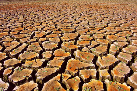 Cracked and dried soil under a hot sunlight Stock Photo - 15925718