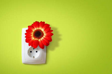 Flower in electric socket. Ecology concept of electricity friends with Nature. photo