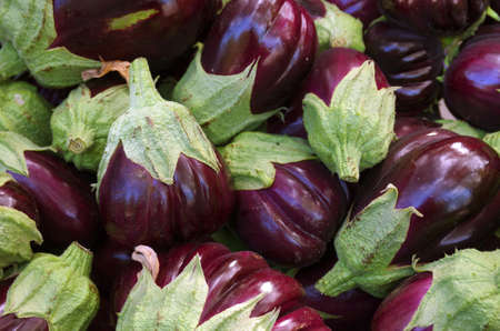 A pile of selected fresh eggplants for sale in a market photo
