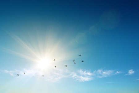 resurrección: Sol que brilla y los pájaros volando sobre un cielo azul celeste
