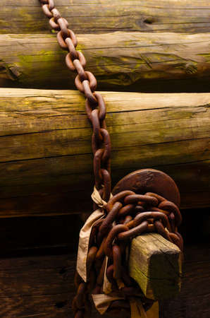 Pile of wooden trunks secured with an old rusty link chain photo