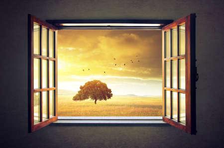 open windows: Mirando por una ventana abierta a un paisaje de campo soleado de primavera