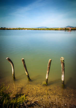 waterscape: Beautiful countryside landscape with a lake and wooden poles
