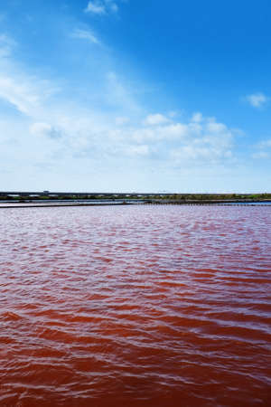 salina: View of red water in a micro algae nursery of a large salina