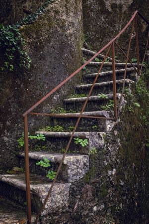 steps and staircases: Detail of old stone stairway covered with fallen Autumn leaves and moss Stock Photo