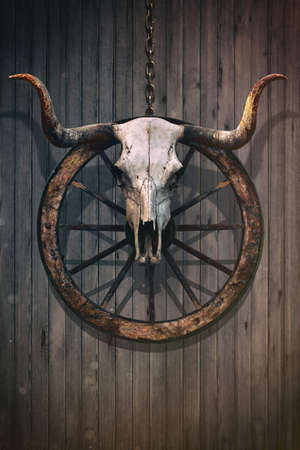 Long horned bull skull and old west wagon wheel hanged on a wooden wall Standard-Bild