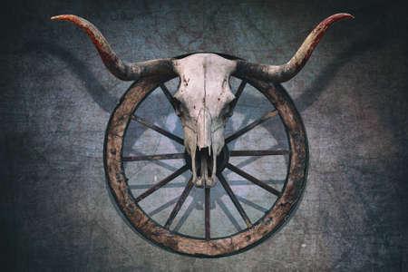 Lange gehoornde stier schedel en oude westen wagenwiel opgehangen op een bekraste muur Stockfoto