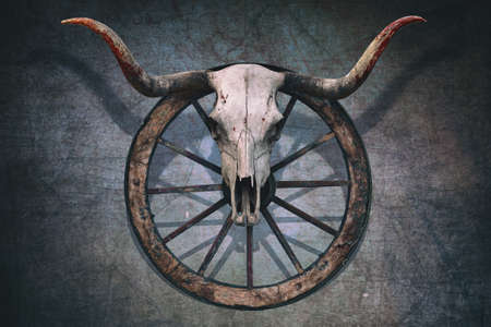 Larga cráneo del toro de cuernos y la rueda de carro del oeste viejo colgado en una pared rayada Foto de archivo