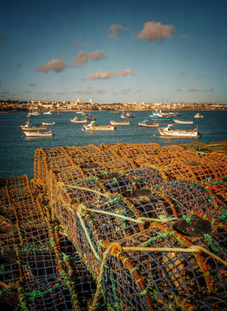 Natural landscape of Cascais Bay, Portugal, with piles of fishing traps in the foreground
