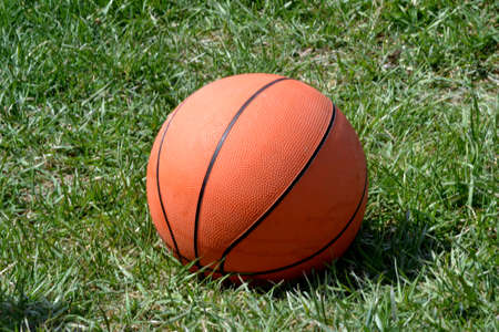 Basketball isolated on green grass