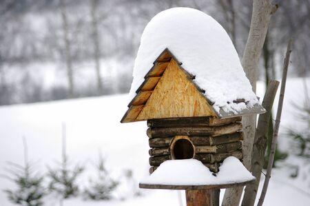 Birdbox under snow during the winter photo