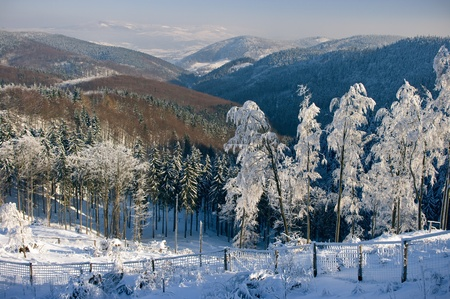 sudeten: Snowy view on the valley